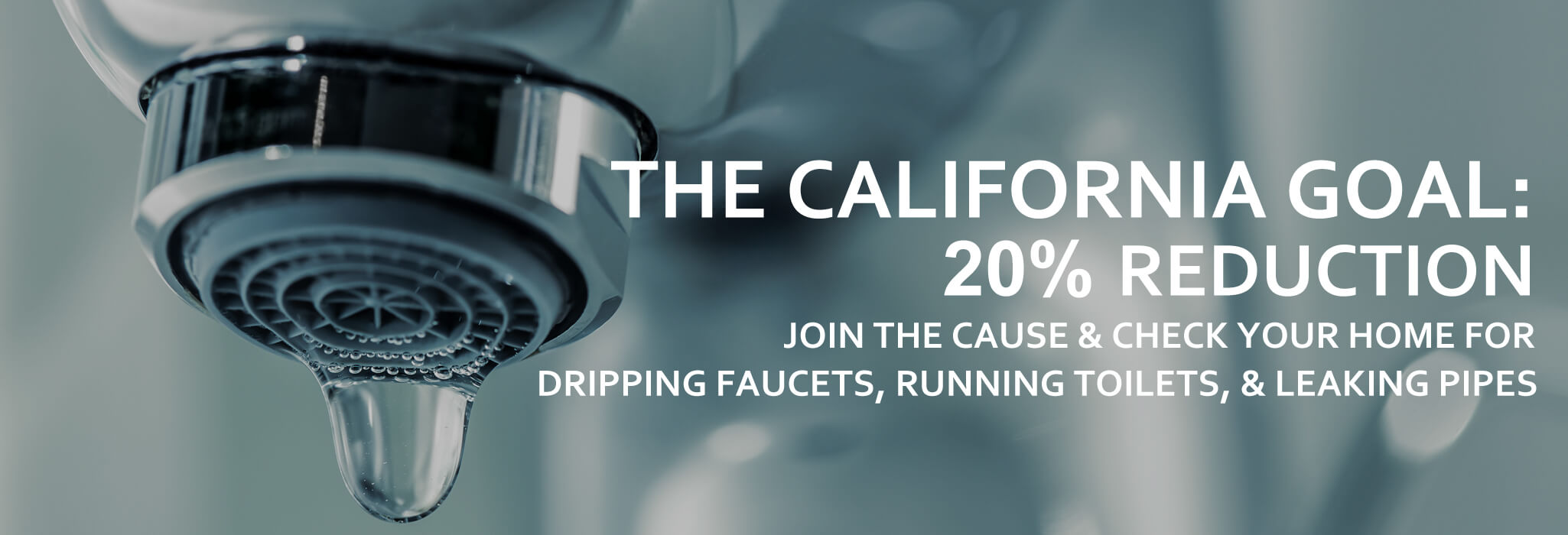 California Goal. Livermore Plumbers Help Reduce Water Usage and Leaks.jpg